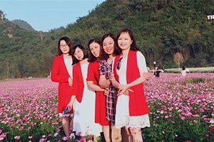 'Lịm tim' trước vẻ đẹp thung lũng hoa lớn nhất Việt Nam ở xứ Lạng