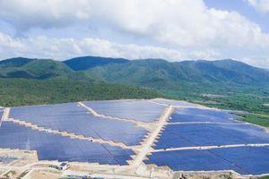 TTC khánh thành nhà máy điện mặt trời có tổng vốn đầu tư hơn 1.400 tỷ đồng