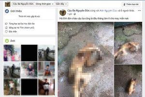 Cảnh cáo nam thanh niên đăng hình ảnh cá thể khỉ bị giết hại lên Facebook