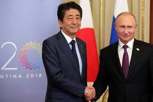 Tín hiệu lạc quan cho triển vọng Nga, Nhật ký hiệp ước hòa bình