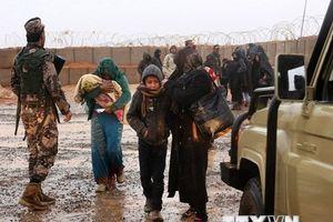 Gần 30.000 người tị nạn Syria tại Jordan đã hồi hương