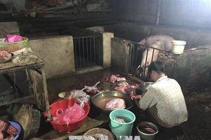 Lò mổ lợn không phép, nhiều lần bị xử phạt vẫn ngang nhiên hoạt động