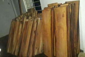 Tại con nước, tại gỗ nó trồi