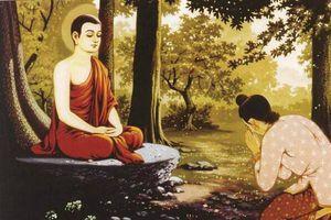 Phật dạy: Phúc báo của con cái đều liên quan tới cha mẹ