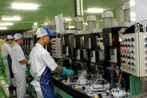 Việt Nam - Hàn Quốc phát triển hợp tác thương mại và đầu tư