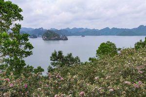 Hấp dẫn đảo Soi Sim