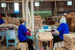 Xuất khẩu sản phẩm gỗ tăng 17,5%