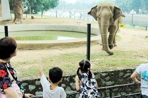Công nhận điểm du lịch Vườn thú Hà Nội