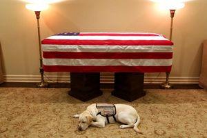 Linh cữu cố Tổng thống Bush 'cha' được đưa tới tòa nhà Quốc hội Mỹ