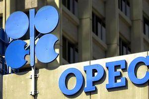 Liệu OPEC và Nga có đạt đồng thuận về cắt giảm sản lượng?