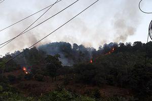 Quảng Ninh: Liên tiếp 2 vụ cháy rừng trong 2 ngày