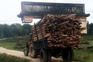 Xe công nông chở keo 'cõng' theo cổng làng