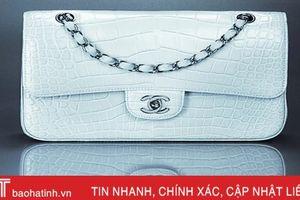 Hãng Chanel tuyên bố ngừng dùng da động vật quý hiếm làm đồ thời trang