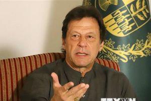 Hòa bình và hòa giải tại Afghanistan nằm trong lợi ích của Pakistan