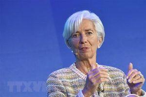 IMF: Những quốc gia theo chủ nghĩa đơn phương đối mặt tương lai u ám