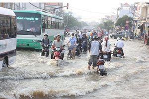 Chủ động ứng phó triều cường trên sông Sài Gòn