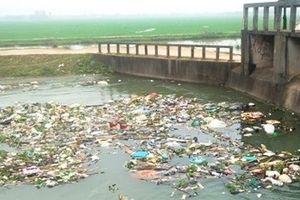 Xác động vật vứt đầy sông hồ: Dân 'nếm' đủ hậu quả