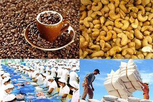 Xuất khẩu nông sản sang EU: Doanh nghiệp Việt phải nâng cao giá trị