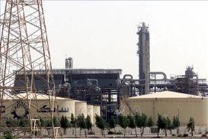 OPEC tìm cách cắt đủ sản lượng để cân bằng thị trường dầu