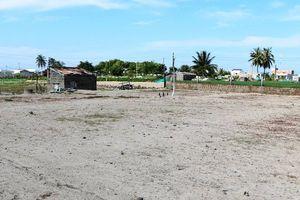Trở lại vùng đất sản xuất bị nhiễm mặn ở Ninh Thuận