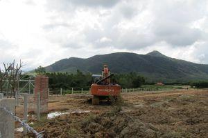 Bình Định: Làm rõ việc thuê đất sản xuất nông nghiệp khai thác đất sét