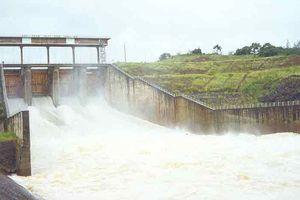 Thủy điện Thác Mơ (TMP) tạm ứng cổ tức bằng tiền mặt, tỷ lệ 15%