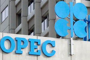 Nga phản đối, OPEC chưa thể đạt thỏa thuận cắt giảm sản lượng