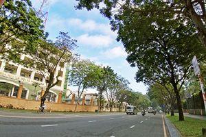 Những góc bình dị khiến chúng ta thêm yêu Sài Gòn hơn
