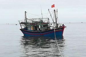 Tàu hỏng máy, 8 thuyền viên lênh đênh trên biển