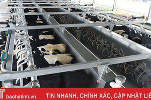 Vinamilk Hà Tĩnh - trang trại theo công nghệ hàng đầu thế giới