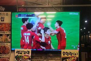 Người Hàn Quốc cuồng nhiệt với đội tuyển Việt Nam ở AFF Suzuki Cup