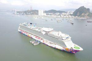 Rà soát, quy hoạch cảng biển phục vụ tàu du lịch