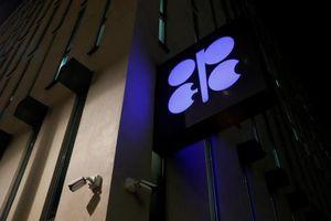 OPEC xem xét quan điểm các nước trước khi quyết định cắt giảm sản lượng dầu