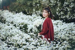 10x Phương Oanh khoe vẻ đẹp tươi tắn, nổi 'bần bật' giữa vườn cúc họa mi