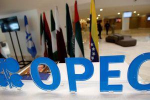 OPEC chưa chốt kế hoạch giảm sản lượng, giá dầu sụt mạnh
