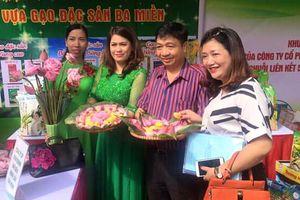 Bảo Minh - khát vọng đưa gạo Việt vươn xa