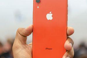 Cách iPhone XR trở nên VÔ ĐỐI khiến nhiều người bất ngờ