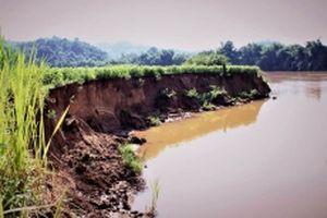 Thu hồi nhiều giấy phép khai thác cát trên sông Đồng Nai