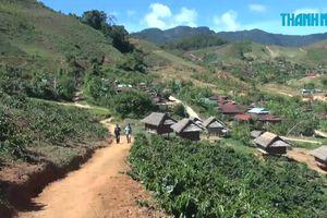 Gieo chữ ở làng Tu Thó