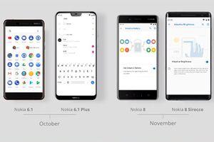 HMD trì hoãn cập nhật Android Pie để tăng doanh số Nokia 8.1?