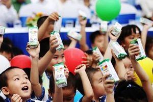 Hà Nội gấp rút chuẩn bị các điều kiện để triển khai Đề án sữa học đường