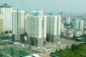 Cây xanh - Thứ 'xa xỉ' đối với người dân tại nhiều khu chung cư