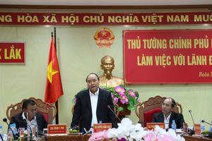 Đắk Lắk: Hướng phát triển nông nghiệp xanh và nông nghiệp công nghệ cao