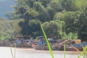 Giá cát cao, cát tặc 'đua nhau' tàn phá sông Đồng Nai