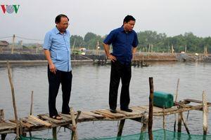 Sai phạm nào khiến ông Tất Thành Cang bị đề nghị Bộ Chính trị kỷ luật?
