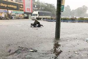 Mưa lớn kéo dài, TP Vinh ngập trong biển nước, giao thông tê liệt