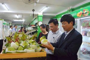 Hòa Bình: Lễ hội cây ăn quả có múi và hội chợ nông nghiệp 2018