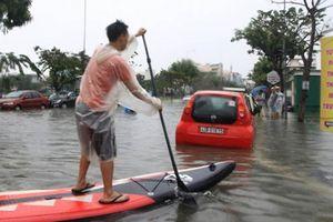 Hài hước cảnh người Đà Nẵng bơi thuyền, bắt cá giữa phố tràn ngập internet