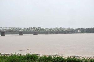 Quảng Ngãi: Cảnh báo lũ trên các sông khả năng lên mức báo động