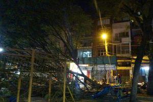 Cành cây lớn trong công viên rơi xuống đè 2 bé gái bị thương